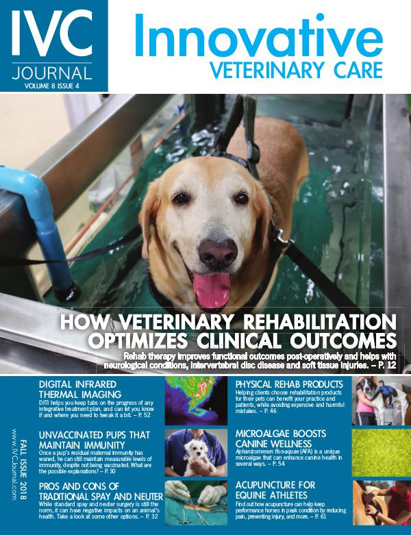 IVC Journal V8I4 Fall 2018