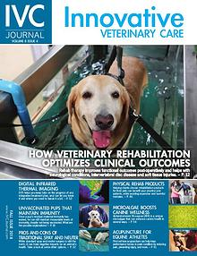 IVC Journal