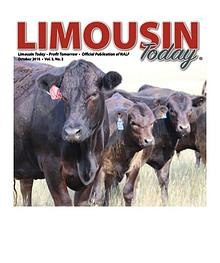 LIMOUSIN TODAY