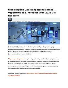 Global Hybrid Operating Room Market Opportunities &Forecast 2018-2025