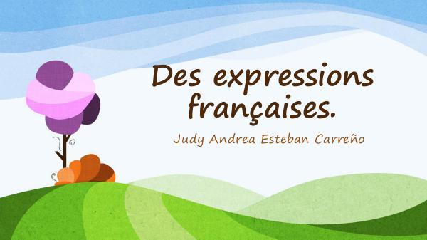 Des expressions courantes en français. Des expressions françaises