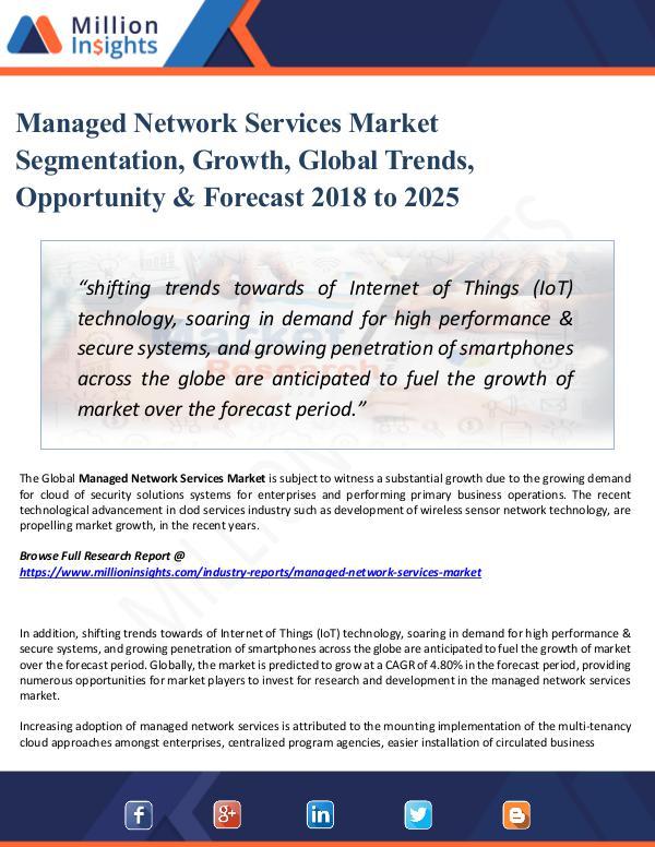 Managed Network Services Market Segmentation, 2025