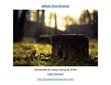 Allison Tree Services