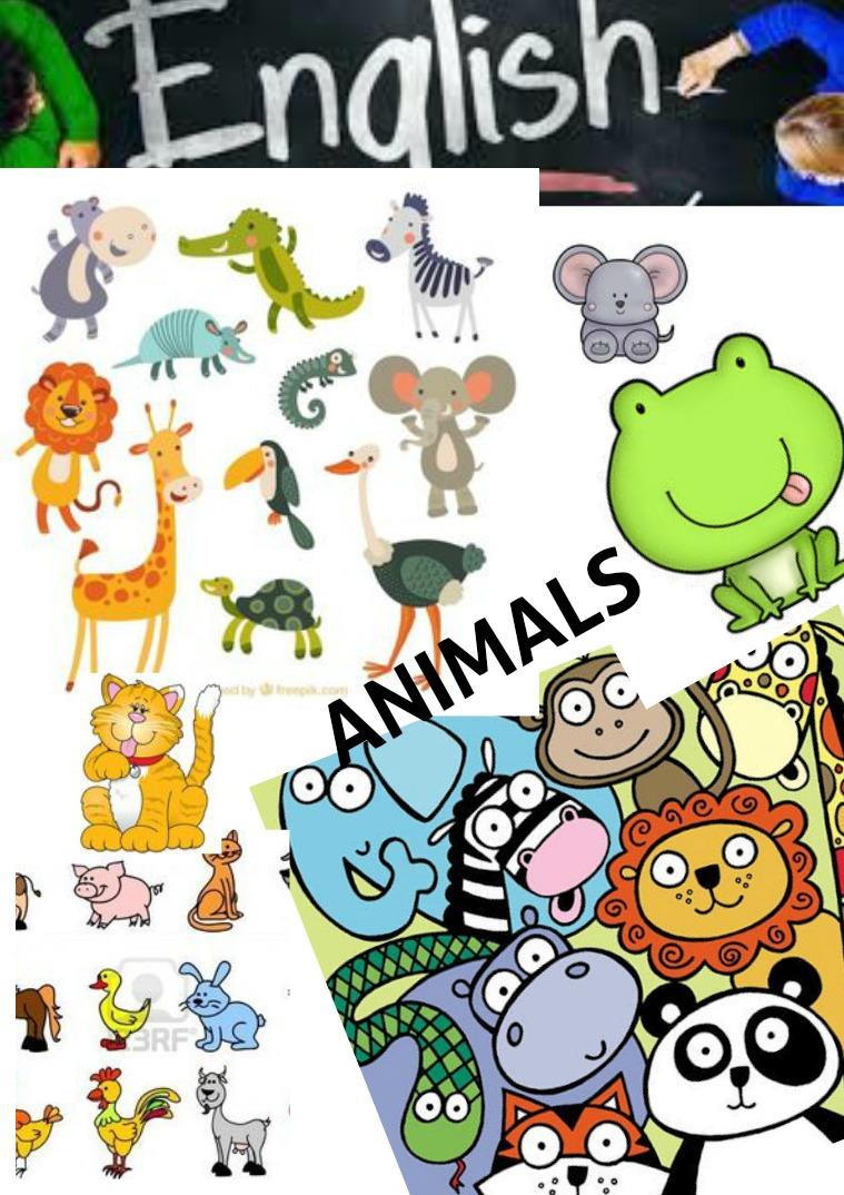 ENGLISH ANIMALS LAURA CORDERO