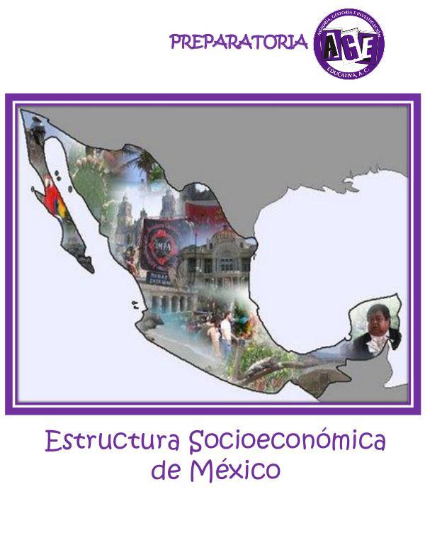 4. Estruct. Socioeconómica de México NPE Estructura Socio Economica de Mexico