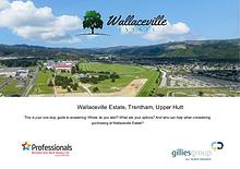 Wallaceville Estate - Information Pack