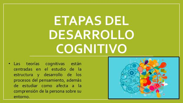 Etapas del Desarrollo Cognitivo ETAPAS DEL DESARROLLO COGNITIVO