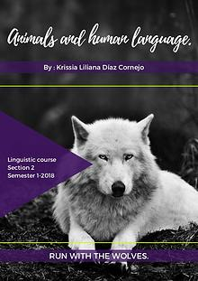 Animals & human language