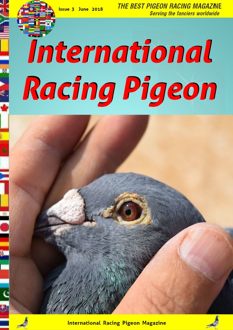 International Racing Pigeon Issue nr 3 . June  2018