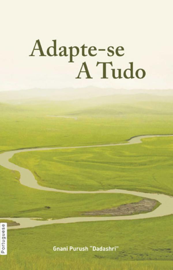 Adjust Everywhere (In Portuguese) Adjust Everywhere (In Portuguese)