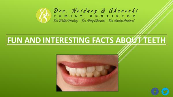 Fun and Interesting Facts about Teeth Interesting Facts About Teeth
