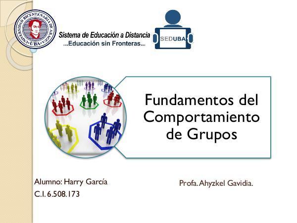 Fundamentos del Comportamiento de Grupos Fundamentos del Comportamiento de Grupos