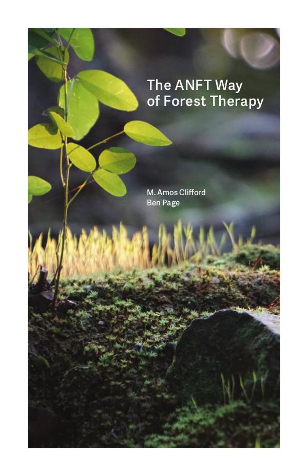 The ANFT Way of Forest Therapy