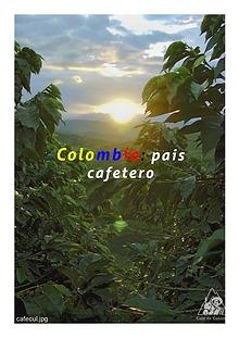 EL CAFE EN COLOMBIA