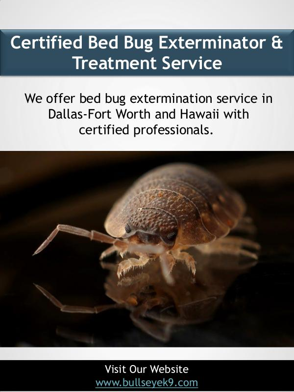 Certified Bed Bug Exterminator & Treatment Service Certified Bed Bug Exterminator & Treatment Service