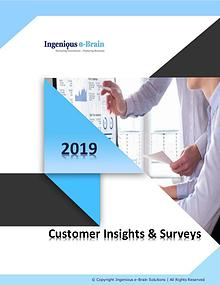 Business Intelligence – Consumer Insights and Surveys