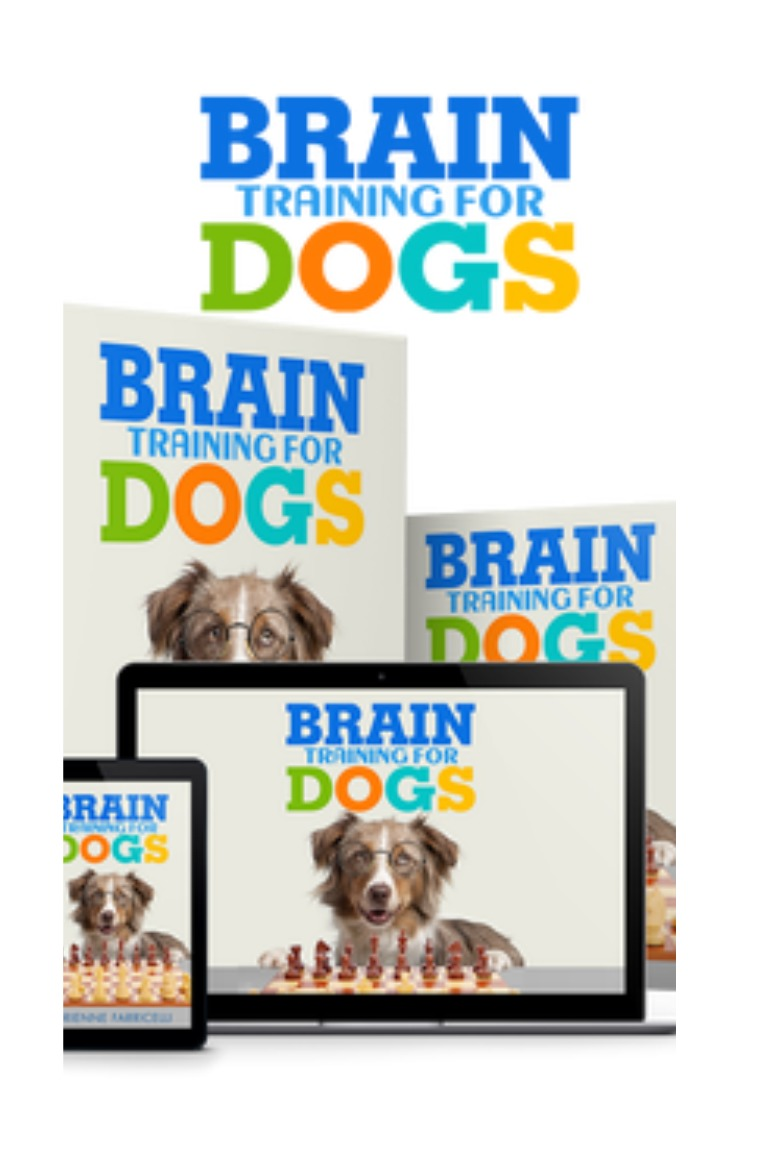 Essential skills books — brilliant family dog.