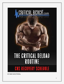 Mike Westerda :The Critical Bench Program 2.0 Review,Honest Review
