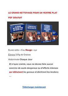 Le Grand Nettoyage Pour Un Ventre Plat PDF  Livre Gratuit