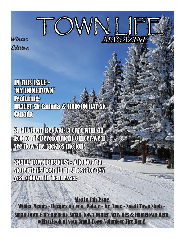 Town Life Winter Edition