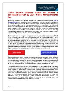Sodium Chlorate Market will witness a substantial growth by 2025