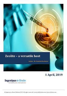 Understanding Zeolite Framework: Ingenious e-Brain Solution