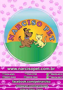 Catalogo Narciso PEt