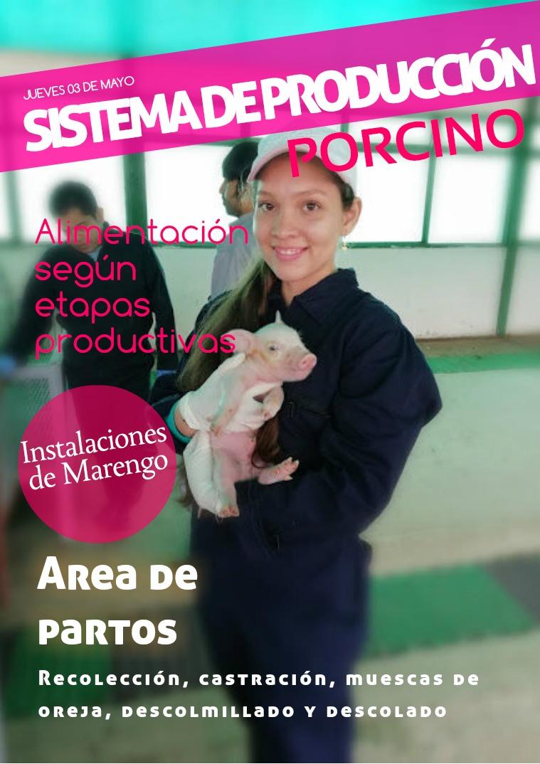 INFORME PORCINOS INFORME SISTEMA REPRODUCCIÓN PORCINO