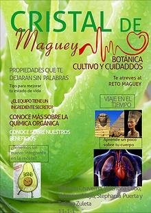 Cristal De Maguey