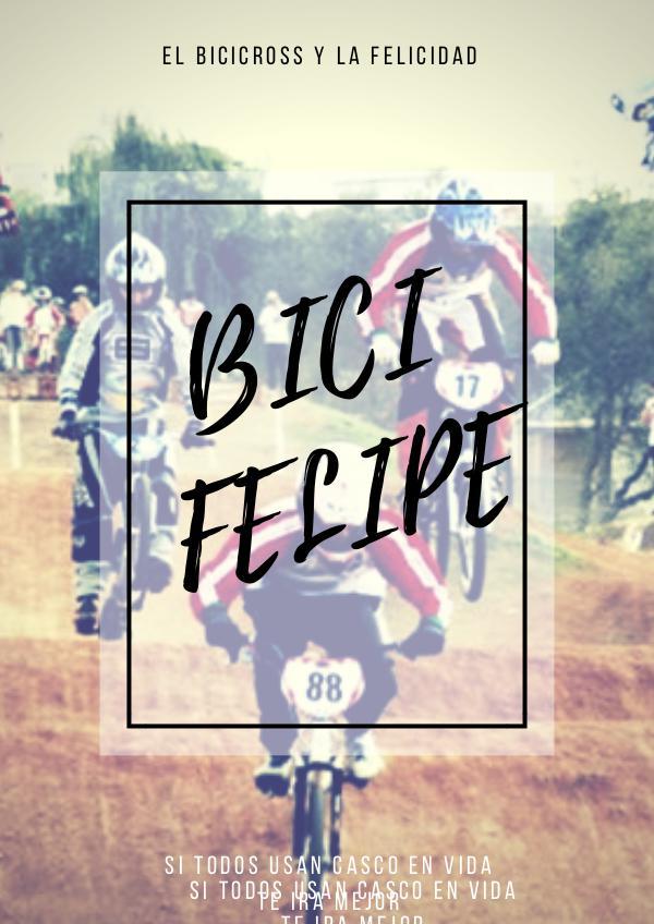 BiciFelipe BICIFELIPE