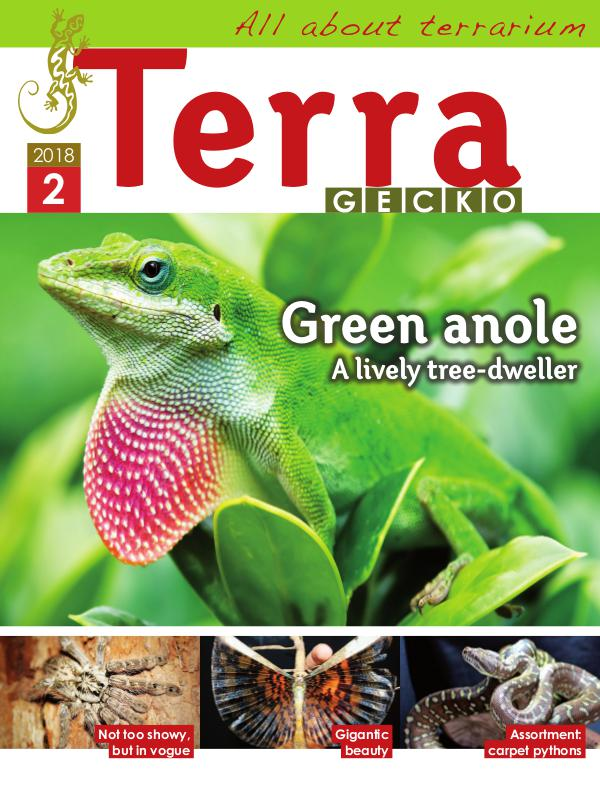 Terra Gecko Magazine : All about terrarium 2018/2