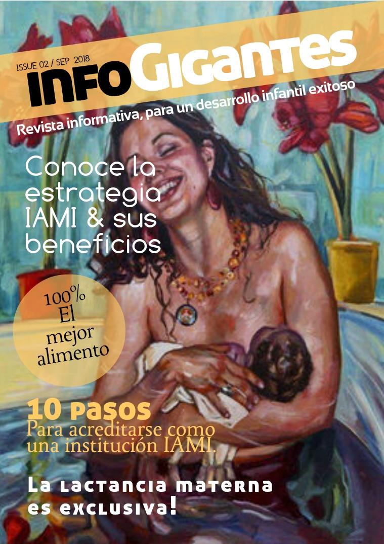 Estrategia IAMI Primera edición