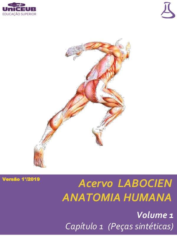 Normas Labocien Acervo Labocien _ Vol 1 _ Anatomia humana cap 1 20