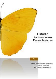 Estudio Socioeconómico Parque Amalucan