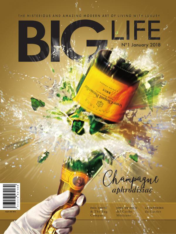 BIG LIFE Magazine BIG LIFE Magazine Edition N°1 - January