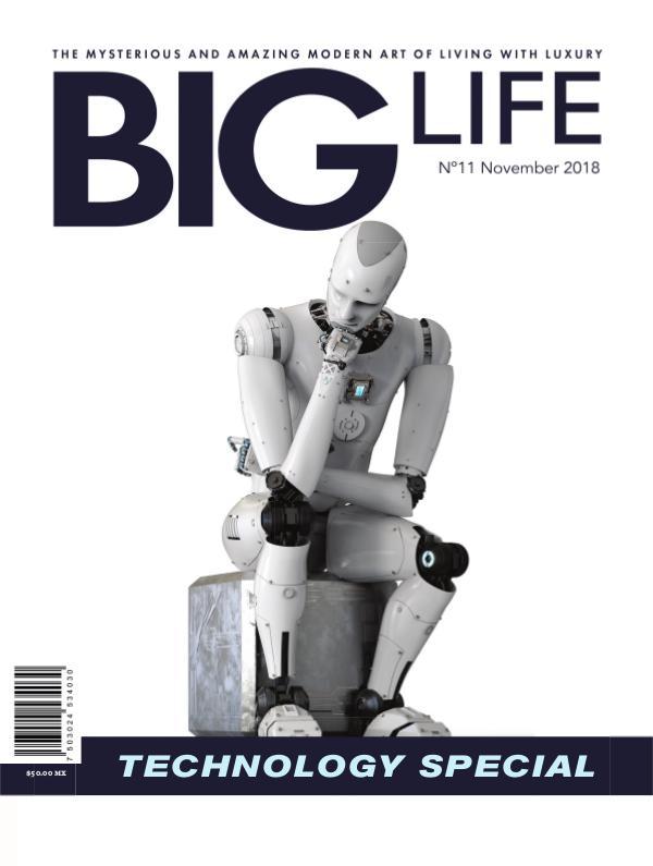 BIG LIFE Magazine BIG LIFE Magazine Edition N°11 - November